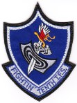 "The 10th TFS ""Fighting Tenth"" squadron patch with the ""leather"" backing."