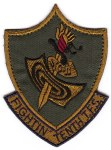 "The subdued version of the 10th TFS ""Fighting Tenth"" squadron patch."