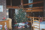 We changed the Christmas tree's position this year from the other end of the living room in front of the sliding glass doors to the back yard, to the dining room in front of the sliding glass doors to the side patio - pulling the dining room table out into the living room to make room for the tree.