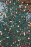 """I've always liked these close-ups of Christmas tree decorations, giving the appearance of stars in the heavens shining brightly against the night sky's inky blackness - only in this case the background is """"Christmas tree green."""""""