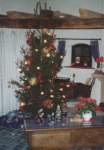 From my experience, traditional German Christmas trees are a lot less decorated and commercialized than the American versions - but of course every household is different and has its own decorating style.
